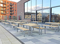 Parallel picnic tables and benches