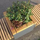 Using planters to introduce greenery to public spaces - benefits