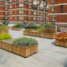 Brown Hart Gardens – Shortlisted for best new public space in the London Planning Awards