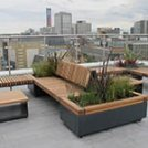 The Rise Of Roof Gardens