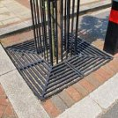 Eltham Tree Grille & Guard